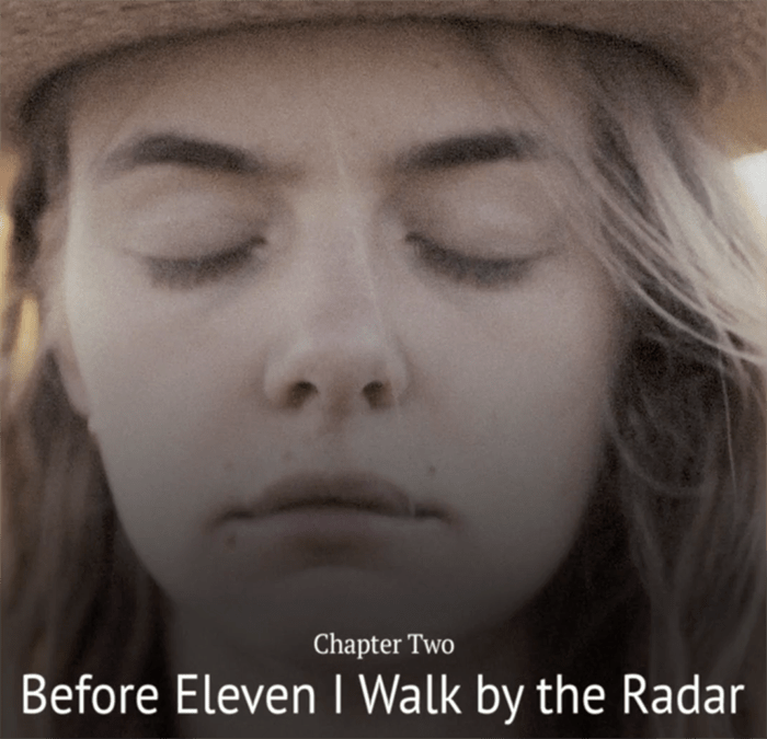 MOO – Chapter 2 (Before eleven I walk by the radar)