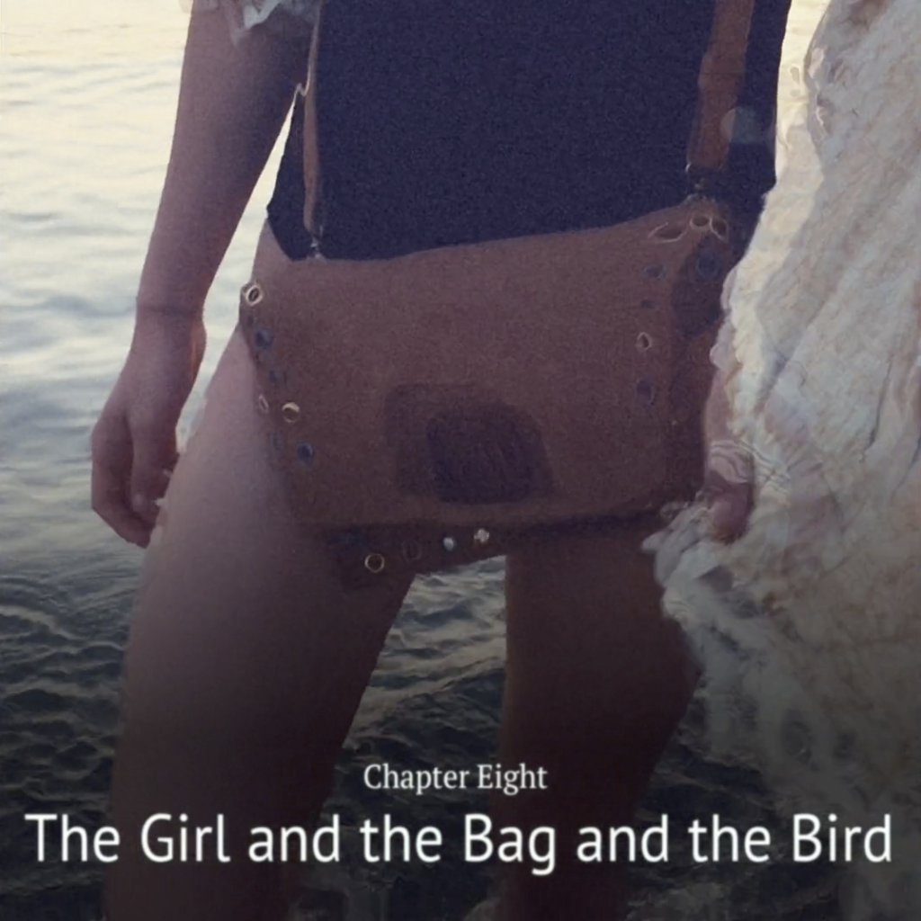 Chapter 08 – The Girl and the Bag and the Bird